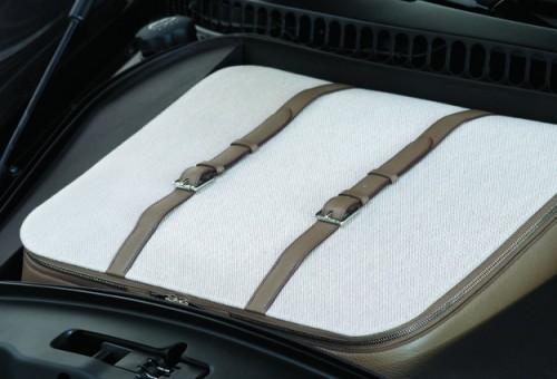 080308 Bugatti Veyron Fbg par Hermes suitscase.jpg